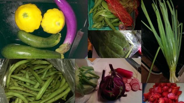 Veggie Collage